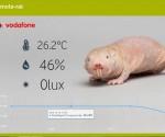 Csupasz_turkalo_IoT (fotó: Vodafone)